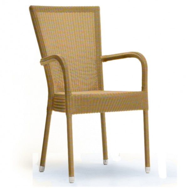 Bantam Dining Arm Chair 4